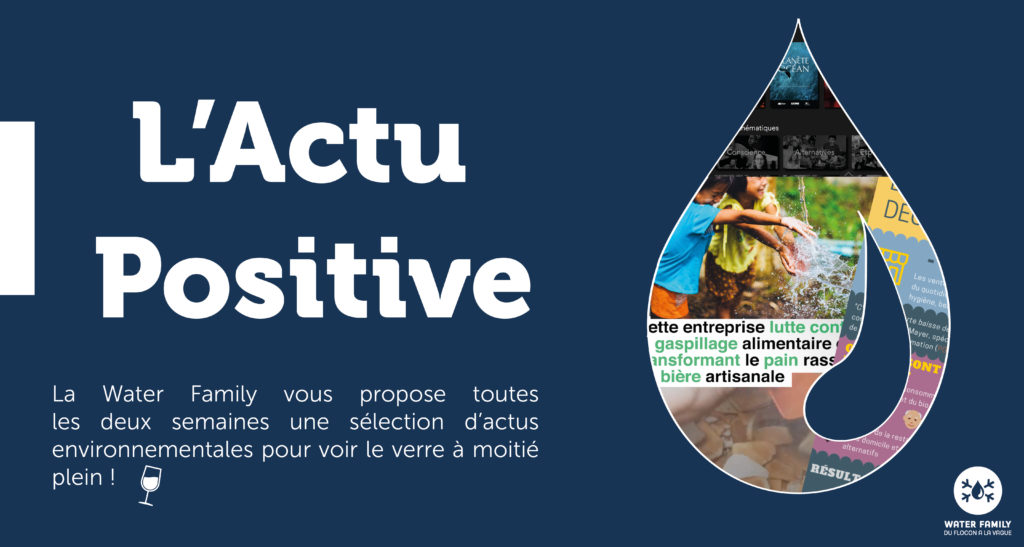 actu positive water family